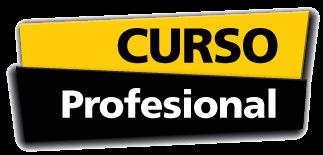 categorias-curso-profesional-gala-formacion