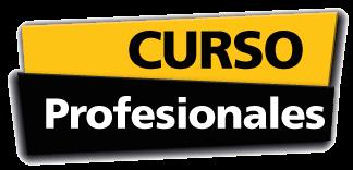Curso-Profesional-gala-formacion