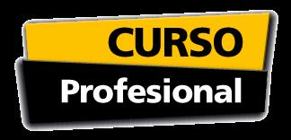 curso-profesional-324-156